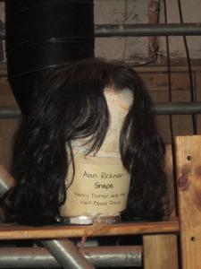 Snape Wig