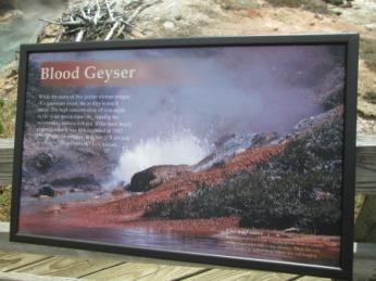Blood Geyser