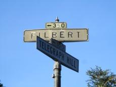 Filbert Street Steps 2