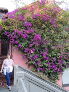 Filbert Street Steps 3