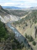 Yellowstone 6